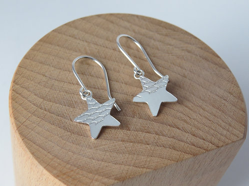 Small Hanging Star Earrings