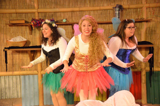 Heights Players Launch New Season of Family Theatre