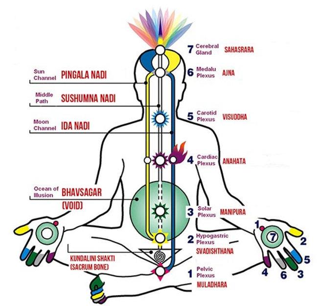 kundalini-Retrain-the-brain-2.jpg