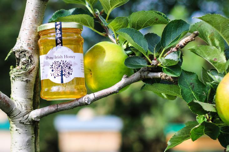 Irish Honey From Local Orchard 340g