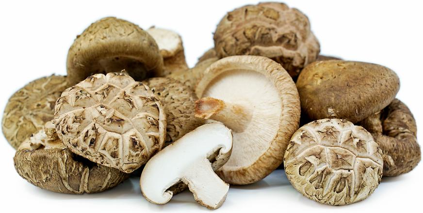 Dried Shiitake Mushroom 50g