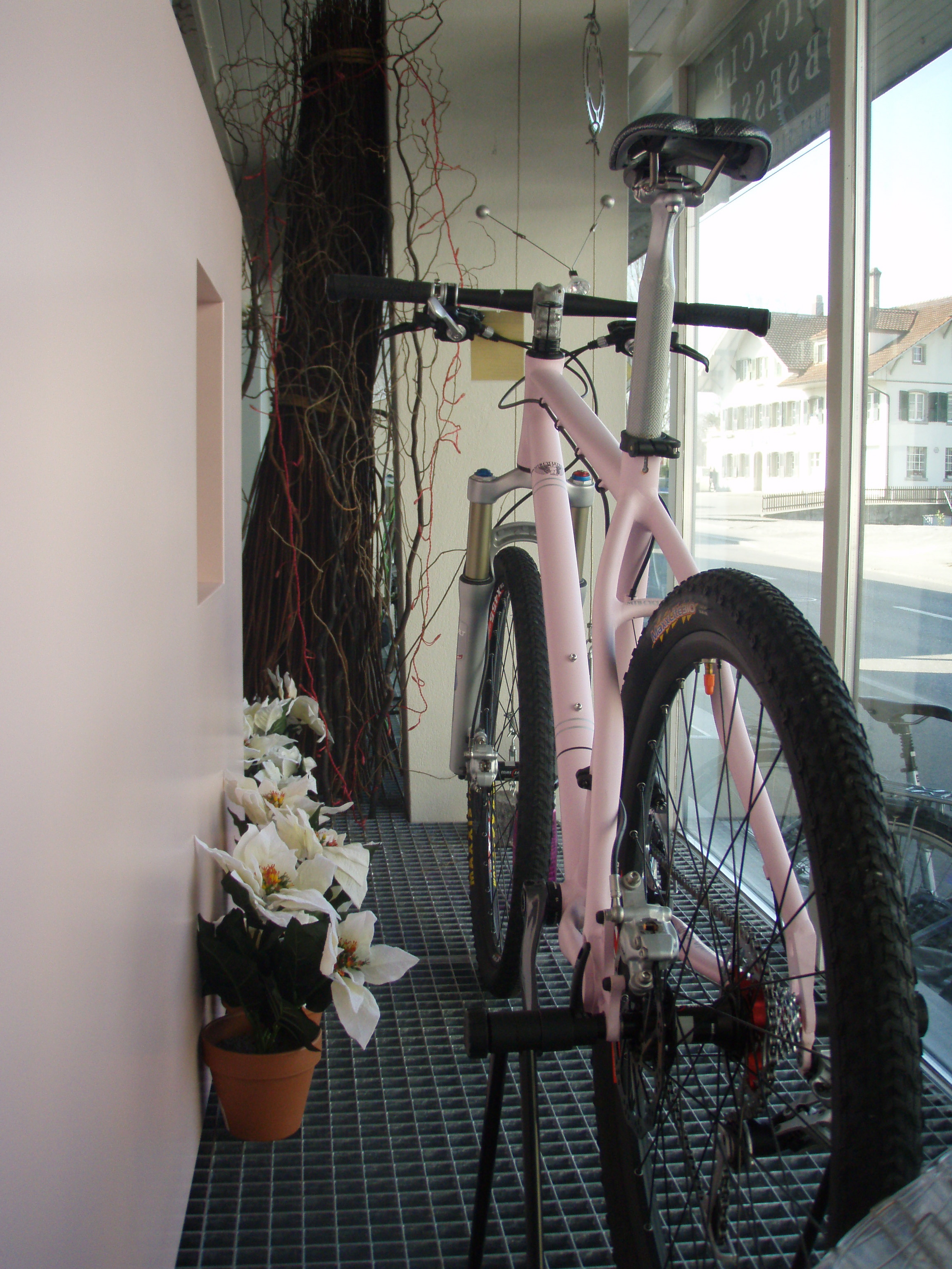 Bicycle Obsession 4