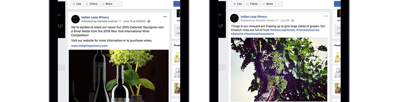 Indian Leap Facebook Ads
