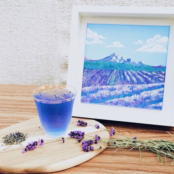 muse studio x lavenderland.jpg