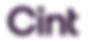 Cint consumer panel testing