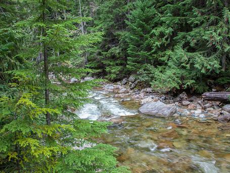 East Creek