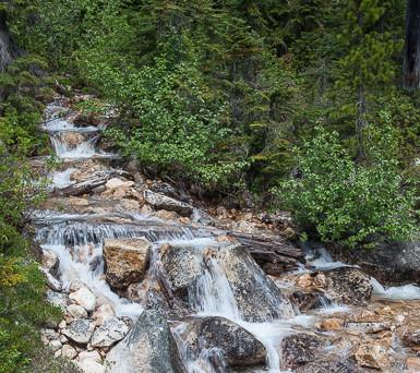 Cutthroat Creek
