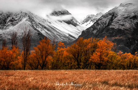 Colours of New Zealand in Autumn