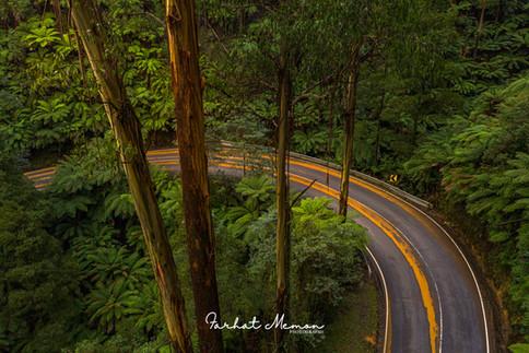 Black Spur Road