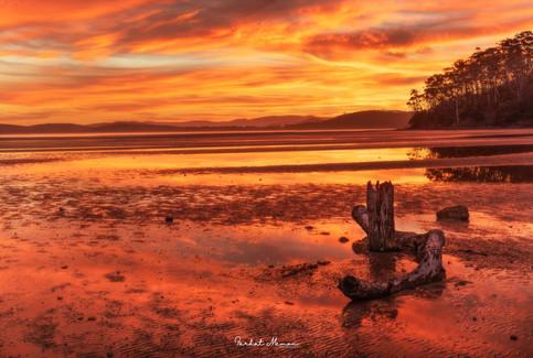 Mortimer Bay, Tasmania