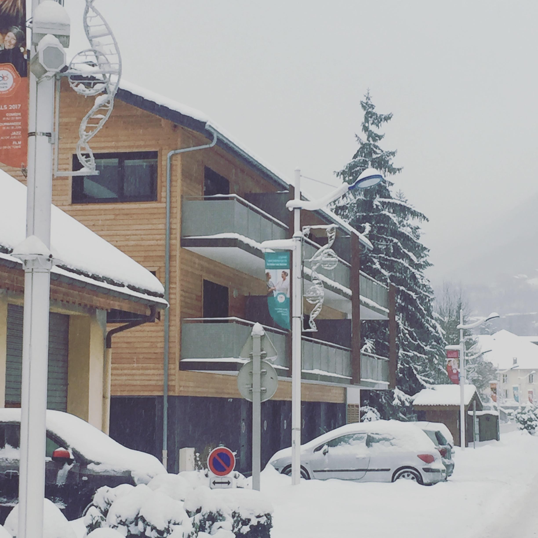 La Niche in the snow