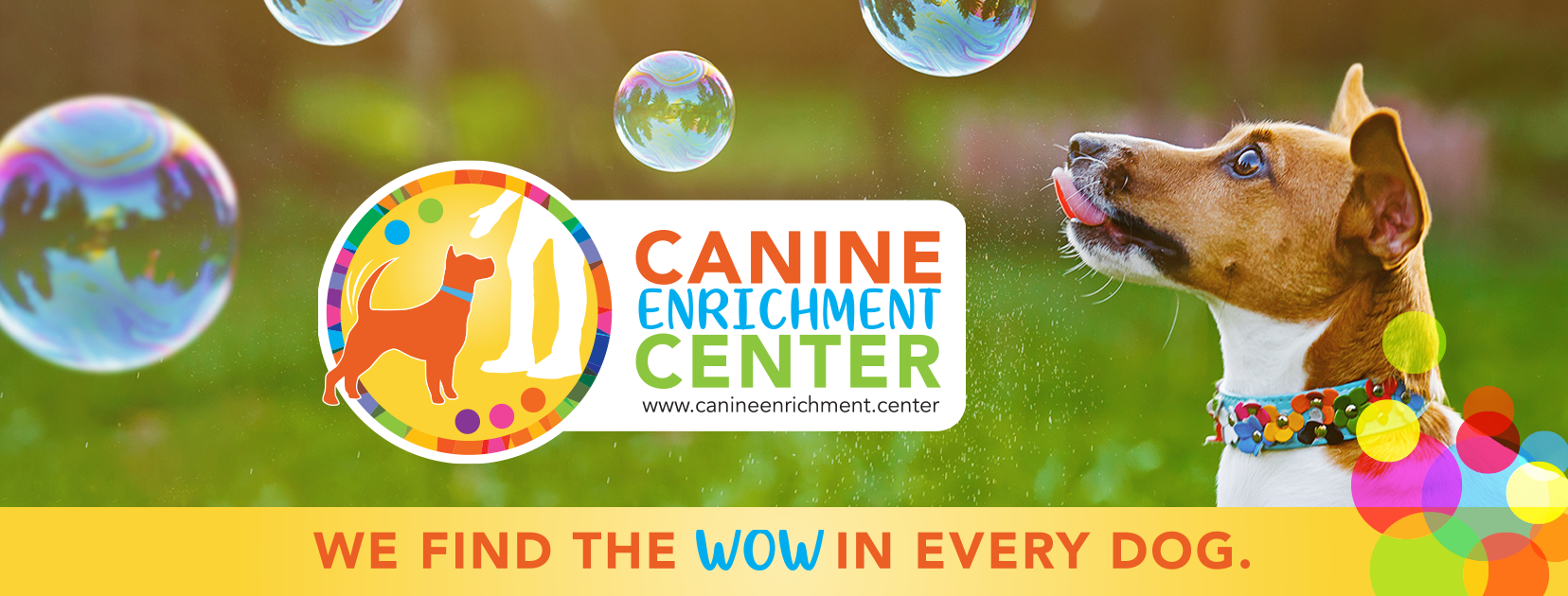Welcome to Canine Enrichment Center | Wisconsin