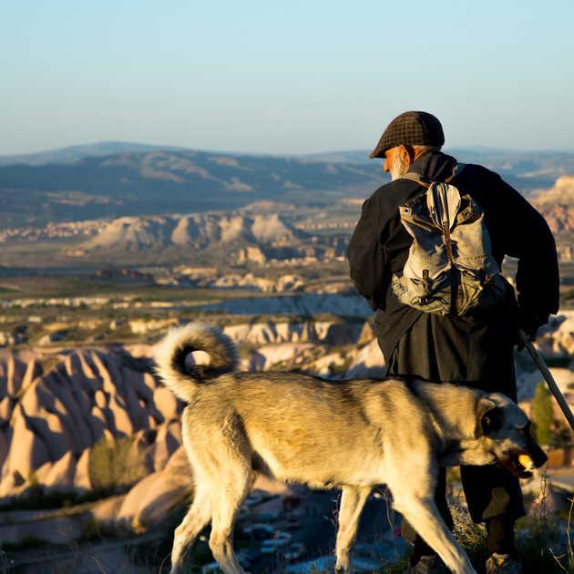 Yaşlı Çoban & Köpek