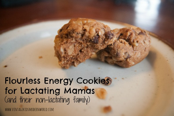 Flourless Energy Cookies for Lactating Cookies (and their non-lactating families) :: Vintage Kids | Modern World Blog