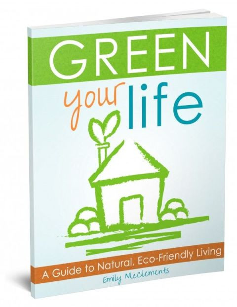 Green_Your_Life-3d_book_cover-e1381205200368
