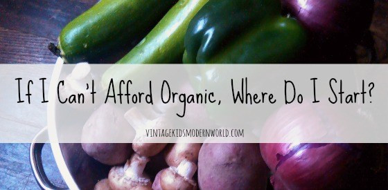If I Can't Afford Organic, Where Do I Start? (part 1) :: vintagekidsmodernworld.com