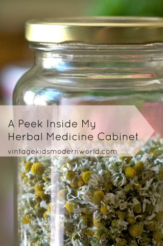 A Peek Inside My Herbal medicine Cabinet | Vintage Kids Modern World