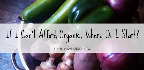 If I Can't Afford Organic, Where Do I Start? (part 1) :: vintagekidsmodernworld.com