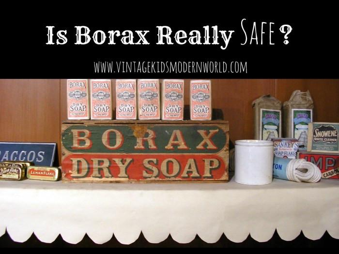 Is Borax Really Safe? :: Vintage Kids | Modern World