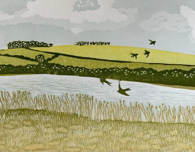 Swallows over the Ley