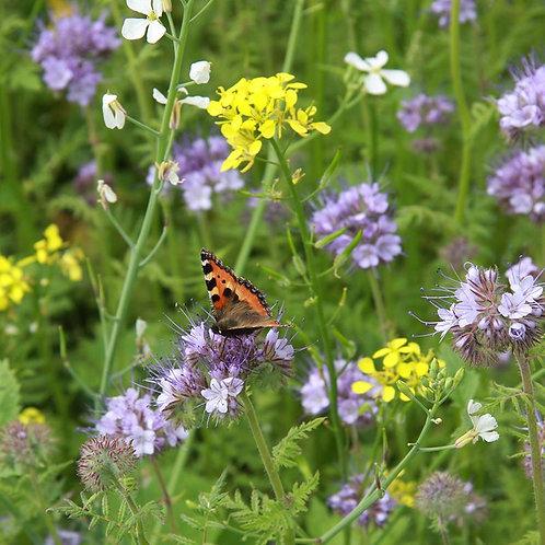 Flower Mix Certified Organic Seeds