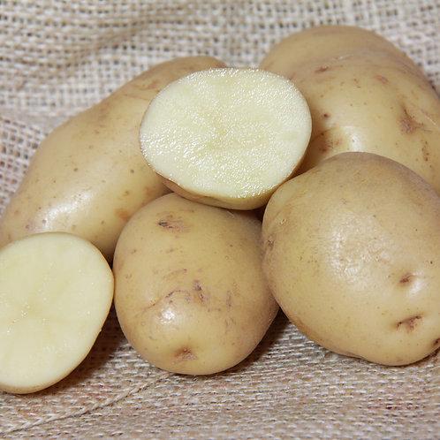 Maris Peer Certified Organic Seed Potatoes