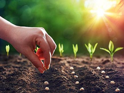 planting-sowing-seeds_si.jpg