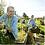 Thumbnail: 'Brighter Days Ahead' - 72 Organic Herb, Veg, Salad & Tomato Plug Plants