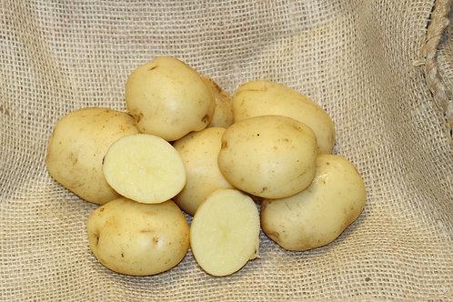 Sante Certified Organic Seed Potatoes