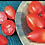 Thumbnail: Amish Pasta Tomato - Organic Plants