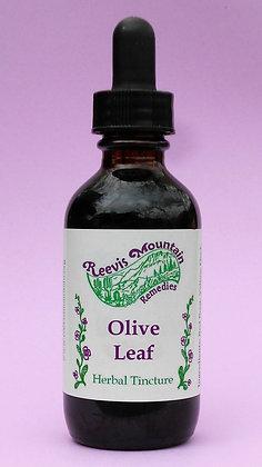 Olive Leaf, 2 oz.