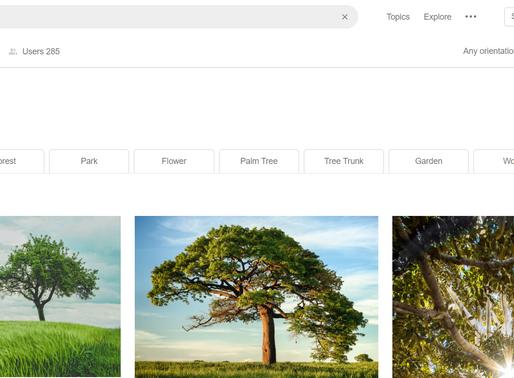 Khai thác giá trị kho dữ liệu ảnh với Lookuq Auto-tagging API