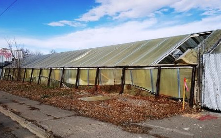 Turning Blight into Opportunity
