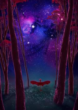 The Draconem Nebula