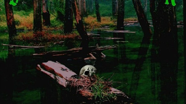 League of Corruption 'Something in the Water' (CD)