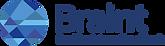 Braint - Logo@4x.png
