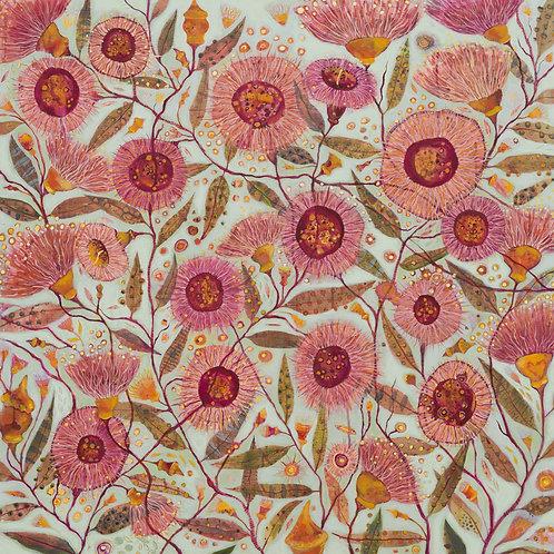Coral gum splendour fine art print