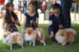 trio con perritos.jpg