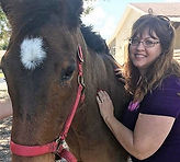 Bioenergy healing with horse.jpg