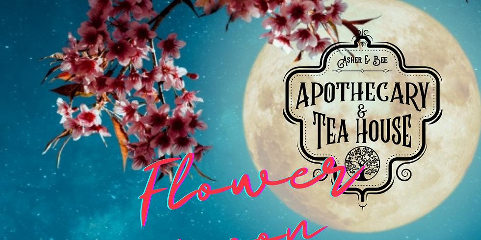 Flower 🌺 Moon 🌝 Meditation & Ritual