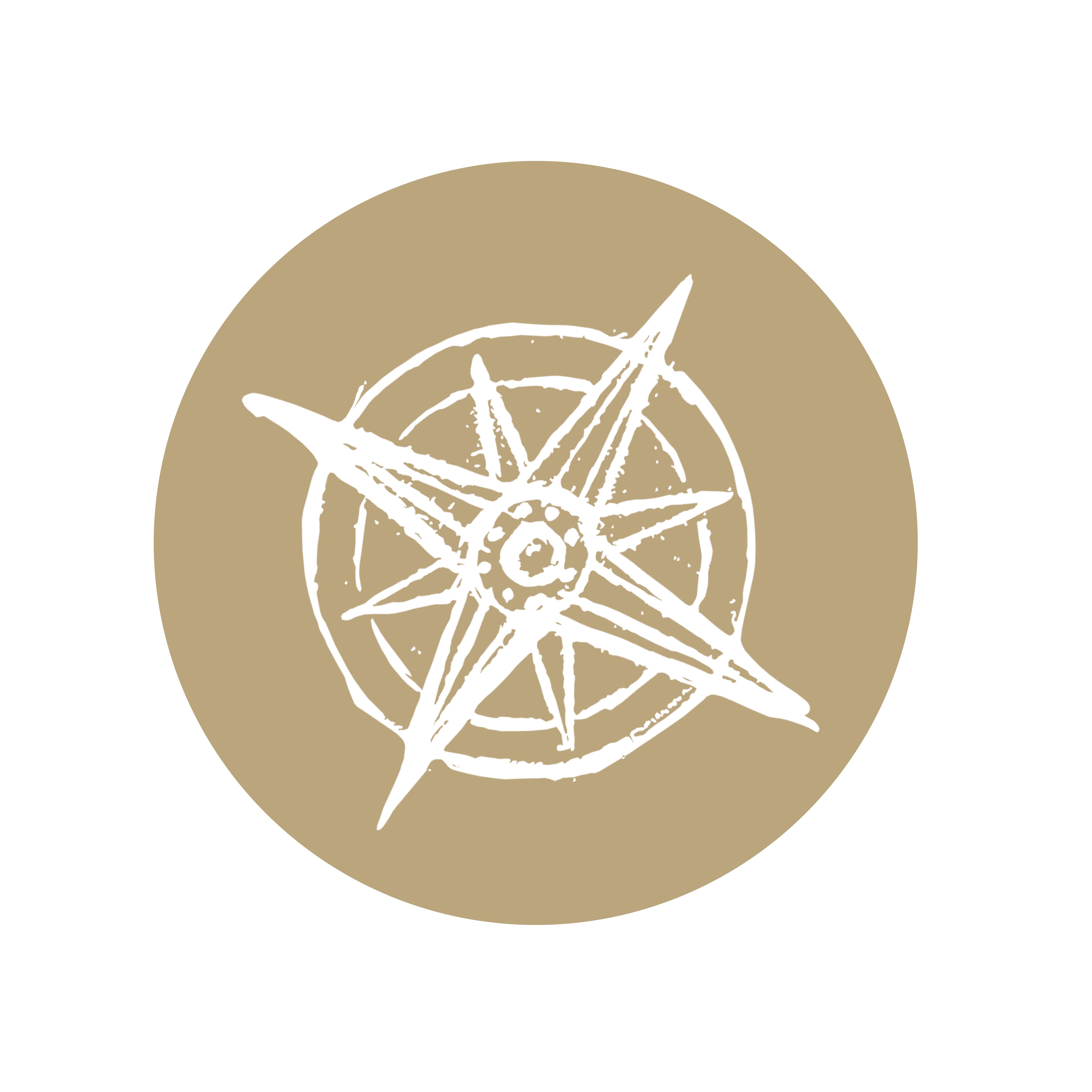 IOAN_für_Kompass_ICON_rund_weiß