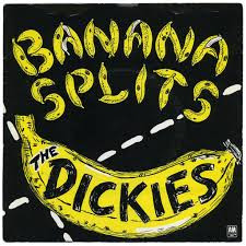 DAWN OF THE DICKIES DOWN UNDER! Guitar legend Stan Lee chats about The Dickies, Fruit Bats and Karao