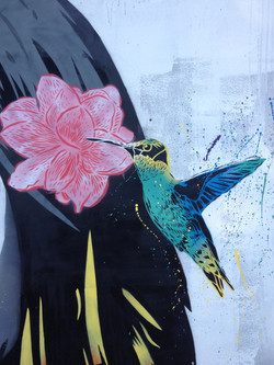 Karl Read, Humming Bird