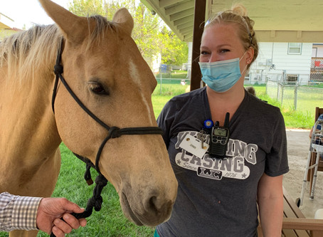 RSVP volunteer and his horse Blue chasin' the blues away at Dickinson nursing homes