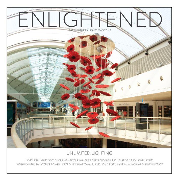 Enlightened_Issue_thumbnail_709_709_80_c1.jpg