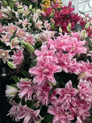 Wales in Bloom