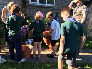 Planting vegetables for badges