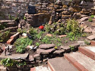 Gardening news from Oakdale