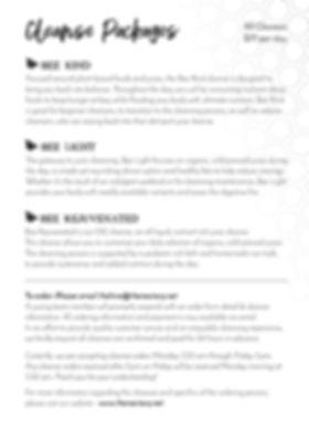 Juice Cleanse Handout_Page_2.jpg