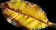 PNGPIX-COM-Autumn-Leaf-PNG-Transparent-I